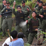 Imperial troopers taunt rebel forces on the forest planet Ecuador