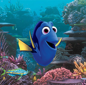 Hey, everybody! Remember me? I'm Dory.