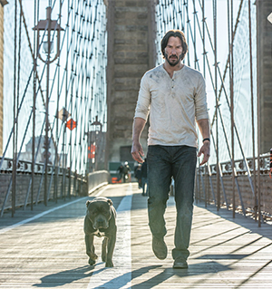 John Wick and the Dog With No Name