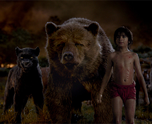 A panther, a bear and a boy coexist in the jungle
