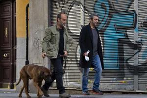 Truman walks his master in Madrid