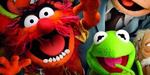 Animal and Kermit return in The Muppets